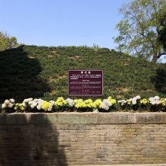 蔡倫墓祠用戶圖片