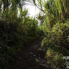 Ecocentro Danaus User Photo