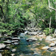 The Habitat Penang Hill User Photo