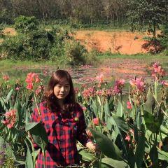 Longzhouzhenxi Botanical Garden User Photo