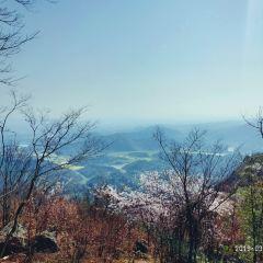 葛仙山用戶圖片