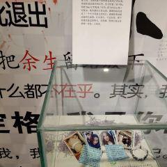 Shenyang Doupai Xingkong Art Museum User Photo