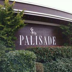 Palisade User Photo