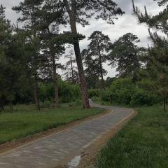 文秀湖公園用戶圖片