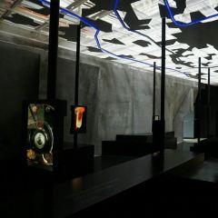 Naturkundemuseum im Ottoneum Kassel User Photo