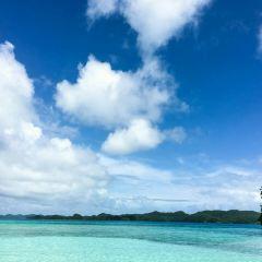 Neil Island用戶圖片
