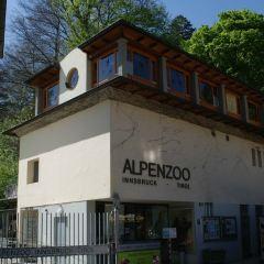 阿爾卑斯山動物園用戶圖片
