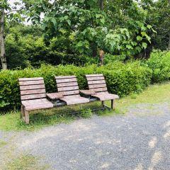 Inae Park User Photo