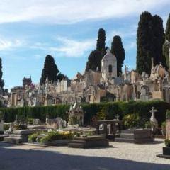 Parc de Chateau User Photo