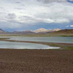 羌塘草原用戶圖片