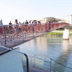 巴克小橋用戶圖片