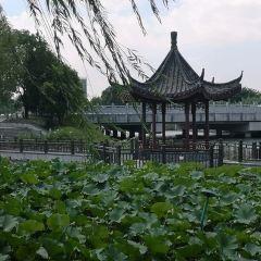 南通壹城用戶圖片