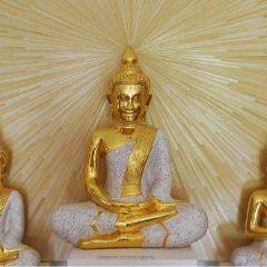 Angkor Artwork E&T Stocker User Photo