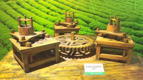 貴州茶文化生態博物館