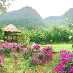Gayas Valley User Photo