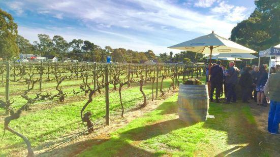 Patritti Winery