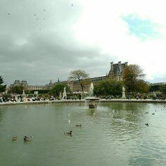 Tuileries Garden User Photo