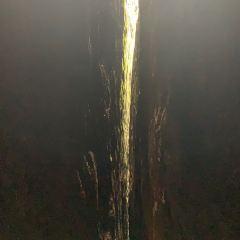 One-Line-Sky User Photo