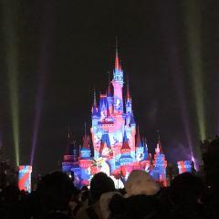 東京ディズニーランドのユーザー投稿写真