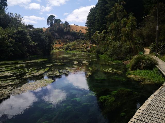 Blue Springs