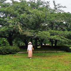 猿江恩賜公園のユーザー投稿写真