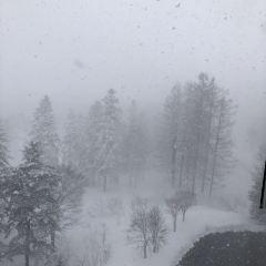 Niseko Village Ski Resort User Photo