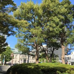 Bank of Japan Osaka Branch Old Building User Photo