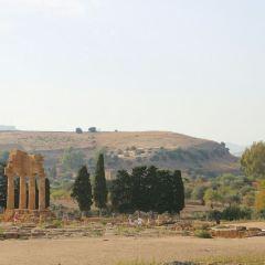 雙子神廟用戶圖片