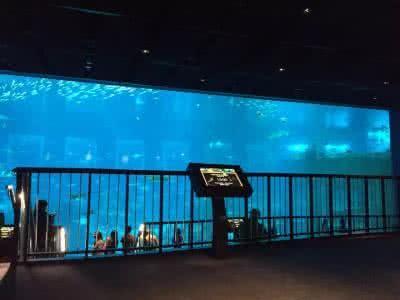 範克裡夫水族館