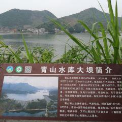 崇陽青山水庫用戶圖片