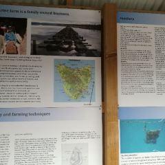 观菲欣纳海洋农场用戶圖片