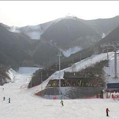 Phoenix Ridge Ski Resort at Baolong Mountain User Photo