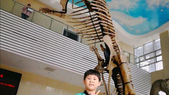 Shandongsheng Dizhi Museum