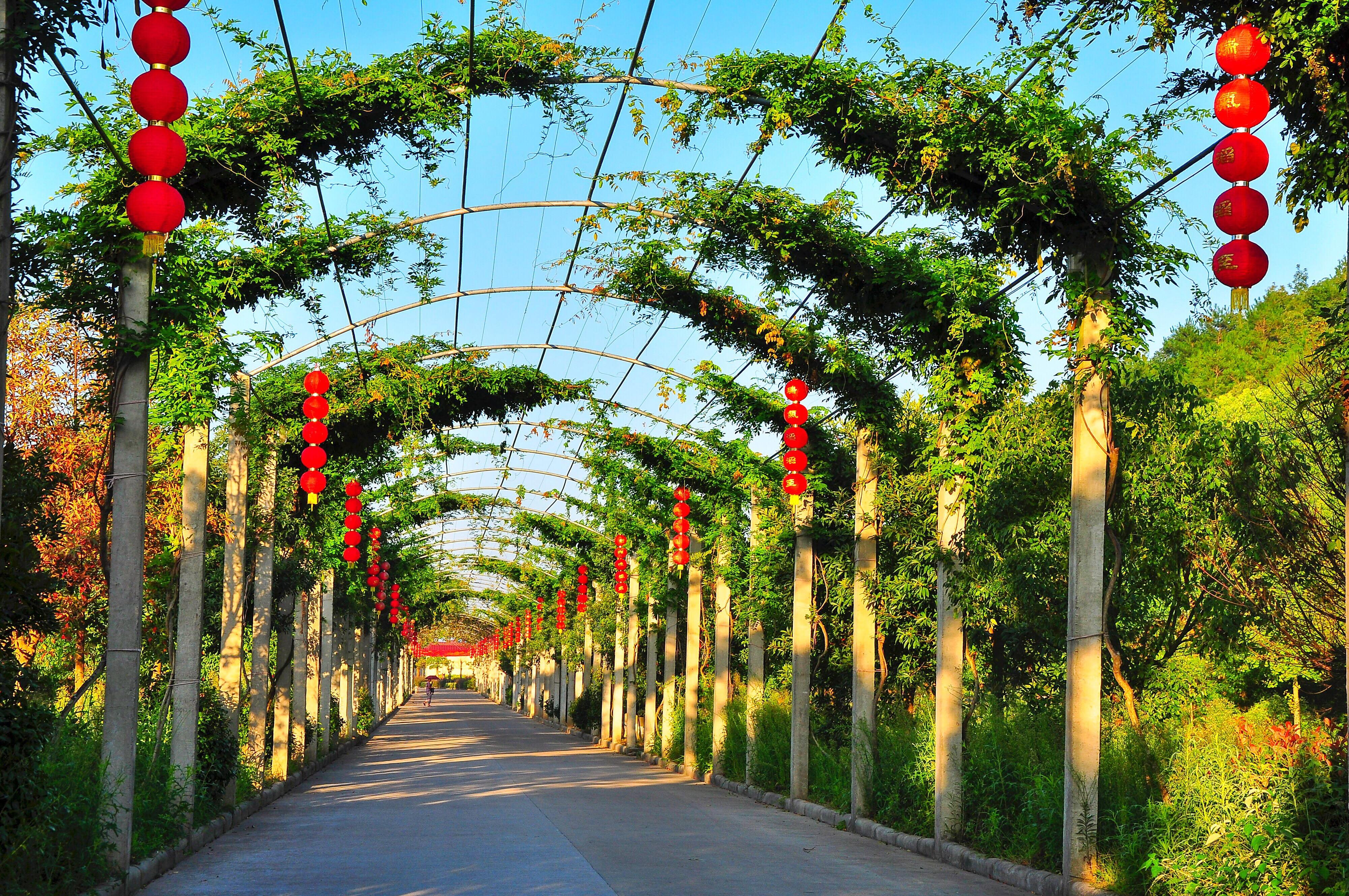 huanxin Farm