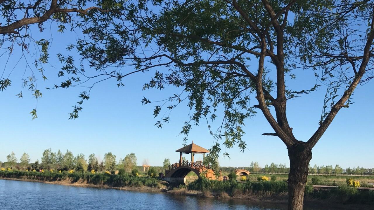 西海濕地公園