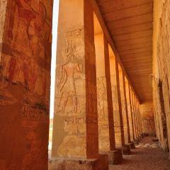 Abydos User Photo