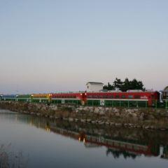 정동진 해돋이공원 여행 사진