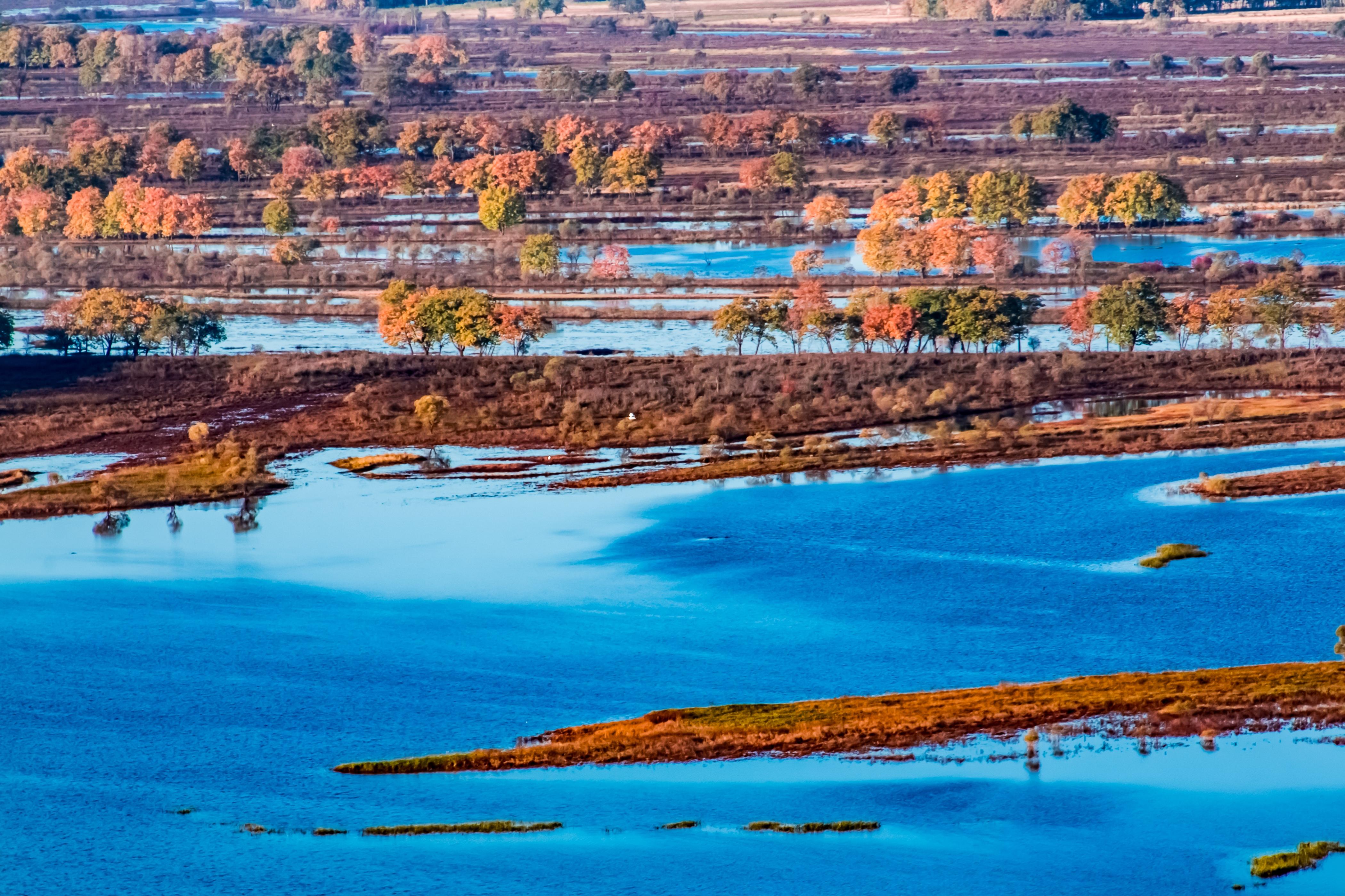 Wusuli River National Forest Park
