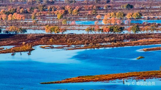 烏蘇裡江國家森林公園