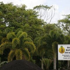Panaewa Rainforest Zoo and Gardens 여행 사진