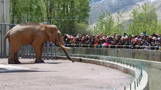 曲水動物園