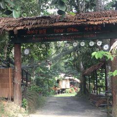 帕帕爾部落用戶圖片
