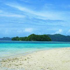 Radhanagar Beach用戶圖片