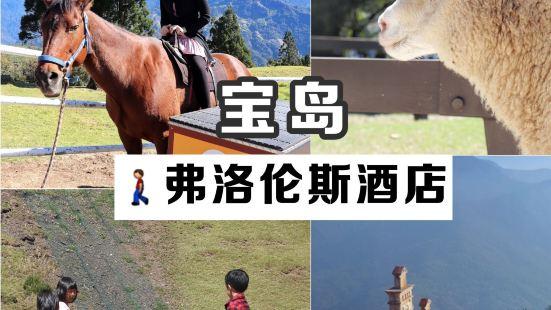 宝岛旅行|北欧风情民宿,高山牧场风格的小瑞士离清境牧产步行1