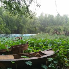 Tangshan Malongwan Qingming Riverside Landscape Garden User Photo