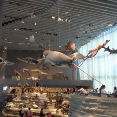 상하이 자연사 박물관 여행 사진