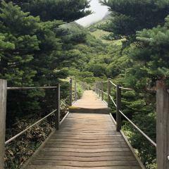 Hallasan National Park User Photo