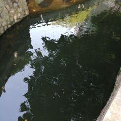 石覺寺用戶圖片