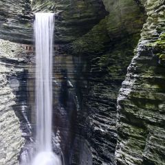 Watkins Glen User Photo