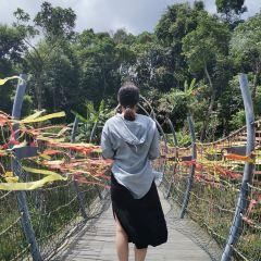 Shenyu Island User Photo